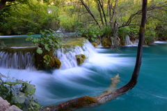 Plitvice lakes. Small waterfall in plitvice lakes, pitvice river Stock Photo