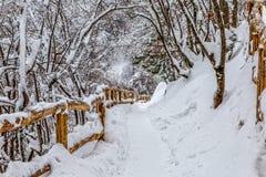 Plitvice lakes snowy winter. Walking trail in snowy winter at Plitvice lakes in Croatia Stock Image