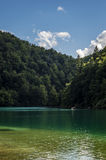 Plitvice lakes. Sunny day in plitvice lakes in croatia Royalty Free Stock Images