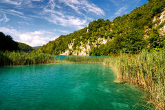 The Plitvice Lakes. Turquoise lake with grassy bank and rocky background, National Park Plitvice Lakes, Croatia, Europe Royalty Free Stock Image