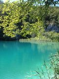 Plitvice lakes Stock Photography