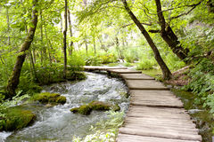 Plitvice lakes - wooden pathway. Stock Photo