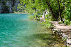Plitvice Lakeside Trail. Path by a lake in Plitvice, Croatia. The water is so clean a fish that can be seen Royalty Free Stock Photos