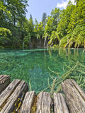 Plitvice National Park. Landscapes from the Plitvice natural Park in Croatia Stock Images