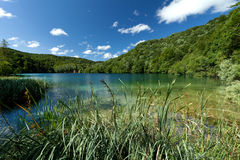 Plitvice National Park Royalty Free Stock Photos