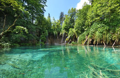 Plitvice National Park. Landscapes from the Plitvice natural Park in Croatia Royalty Free Stock Photos
