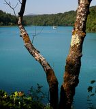 Plitvice National Park / lake detail Royalty Free Stock Photo