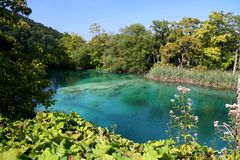 Plitvice National Park / lake view Royalty Free Stock Images
