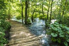 Plitvice nationalpark Royaltyfria Bilder