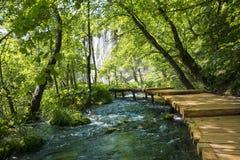 Plitvice nationalpark Fotografering för Bildbyråer