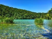 Plitvice nationalpark Arkivbilder