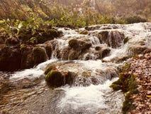 Plitvice Park湖克罗地亚 免版税图库摄影