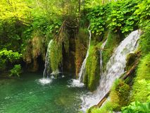 Plitvice park in Croatia Royalty Free Stock Photography