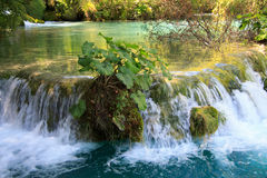 Plitvice park narodowy Fotografia Royalty Free
