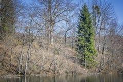 Plitvice park narodowy zdjęcie stock