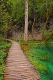 Plitvice See-Nationalpark Kroatien Stockbild