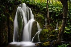 Plitvice See-Wasserfall II Stockfotografie