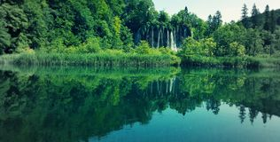 Plitvice Seen, Kroatien Stockfotografie