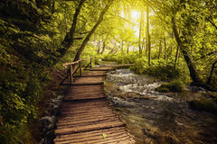Plitvice Seen Nationalpark, Kroatien lizenzfreies stockbild