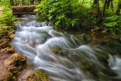 Plitvice Seen Nationalpark, Kroatien lizenzfreies stockfoto