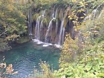 Plitvice sjön, Kroatien, precis den lilla sjön är det mörkt - grönt och att förbluffa stället royaltyfri foto