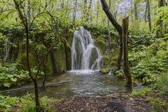 Plitvice vattenfall för skog för landskap för sjöhöst Arkivfoton