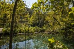 Plitvice vattenfall och sjöar, Kroatien royaltyfri fotografi