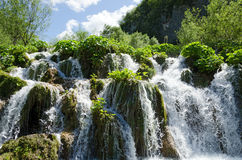 Plitvice. A Waterfall. Waterfall in Plitvice Lakes, Croatia Royalty Free Stock Photos