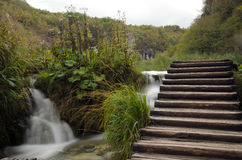 Plitvice waterfalls, Croatia Royalty Free Stock Photography