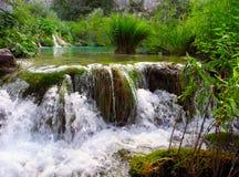 Plitvice Waterfalls, Croatia. The waterfalls of Plitvice lakes in the summer, Croatia Royalty Free Stock Image