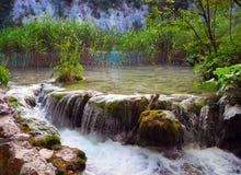 Plitvice Waterfalls, Croatia. The waterfalls of Plitvice lakes in the summer, Croatia Stock Images