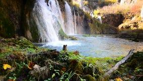 Plitvicewaterval in de lengte van de de herfsttijd, Kroatië stock video