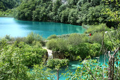 Plitvicka lakes... Royalty Free Stock Photo