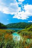 Plitvitski Seen in Kroatien Lizenzfreie Stockbilder