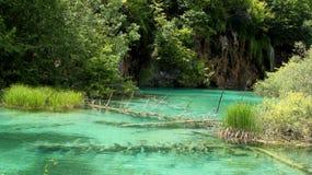 Plivicka湖-清楚的水 库存照片