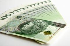 100 PLN Fotografia Stock Libera da Diritti
