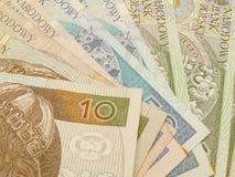 PLN-valuta Royaltyfria Bilder