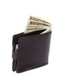 Plånbok med dollar Arkivbild