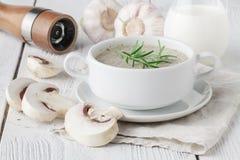 Plocka svamp kräm- soppa med örter och kryddor i den vita bunken Arkivfoto