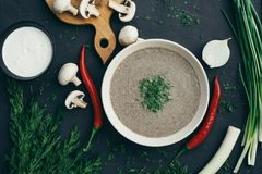 Plocka svamp kräm- soppa på en tabell, mat Fotografering för Bildbyråer
