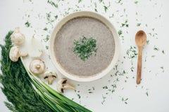 Plocka svamp kräm- soppa på en tabell, mat Royaltyfri Fotografi