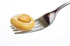 Plocka svamp på en gaffel Royaltyfria Foton