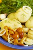 plocka svamp potatisen royaltyfri fotografi