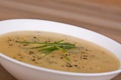 plocka svamp soup Royaltyfri Foto
