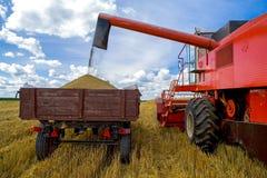 Plockning av vete Traktor- och sakkunnigplockningutrustning Royaltyfria Bilder