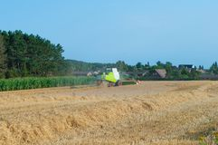 Plockning på ett fält i Danmark Royaltyfri Fotografi
