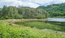 Idyllic view near Plockton village in the Highlands of Scotland in the county of Ross and Cromarty. stock photography
