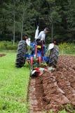 ploga för match för jordbruks- dund som ganska är provinsiellt Royaltyfria Bilder