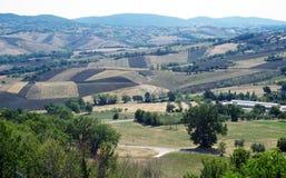 Plogade fält i Marche Royaltyfri Foto