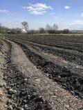 Plogat fält för potatis i brun jord på den öppna bygdnaturen royaltyfri fotografi